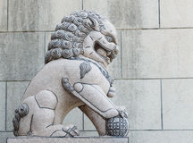 Chinese Imperial Lion Statue. Beautiful chinese stone lion sculpture Stock Images
