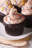 Beautiful chocolate cupcakes decorated with candy sprinkles Royalty Free Stock Image