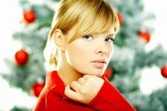 Beautiful Christmas 2 Royalty Free Stock Photo