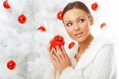 Beautiful Christmas 2 Stock Photos