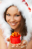 Beautiful Christmas Stock Photography