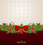 Beautiful Christmas background with mistletoe Royalty Free Stock Photos