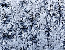 Beautiful Christmas cold shiny frost pattern on glass winter cle. Ar morning Royalty Free Stock Images