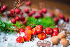 Beautiful Christmas composition with apple, nuts, fir tree and s royalty free stock photo