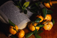Beautiful Christmas decoration with tangerines in the night light garlands. Citrus still life. The symbol of the new year Stock Image