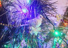 Beautiful Christmas decorations for home and Christmas trees. Beautiful Christmas decorations for the home and the Christmas tree, shiny birds, unusual balls Royalty Free Stock Photos