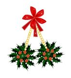 A Beautiful Christmas Holly with A Red Bow Stock Images