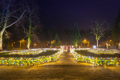Beautiful Christmas illumination at the park Stock Photo