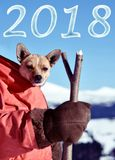 Beautiful Christmas landscape with cute puppies in a Santa costume on the background of winter mountains as a symbol of the New Y. Ear leaflet, greetings royalty free stock photos