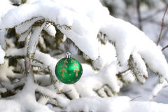 Beautiful Christmas and New Years Stock Photography