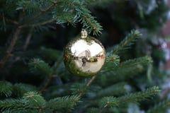 Beautiful Christmas and New Years scene. / Christmas market Stock Image