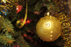 Beautiful Christmas picture with Christmas tree and ball. New Years Eve celebration background with Gold ball decorations. Bokeh gold garland on green  tree Royalty Free Stock Photography