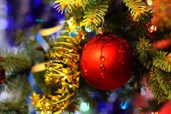 Beautiful Christmas picture with Christmas tree and ball. New Years Eve celebration background with Red ball decorations. Bokeh gold garland on green  tree Royalty Free Stock Images