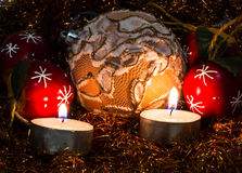 Beautiful Christmas picture Royalty Free Stock Photography