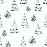 Watercolor fir tree christmas pattern vector illustration