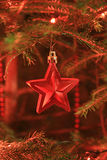 Beautiful Christmas star Stock Photography