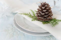 Beautiful Christmas table Stock Images