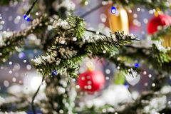 Beautiful christmas tree Royalty Free Stock Image