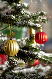 Beautiful christmas tree Stock Photography