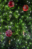 Beautiful christmas tree decoration. Beautiful christmas tree and light for decoration Stock Photography