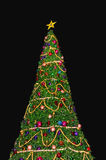 Beautiful Christmas Tree Royalty Free Stock Photos