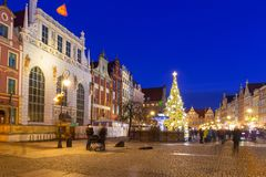 Beautiful Christmas tree in old town of Gdansk. Poland Stock Image