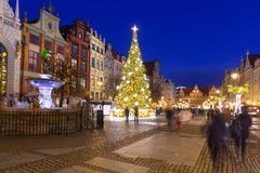 Beautiful Christmas tree in old town of Gdansk. Poland Stock Photography