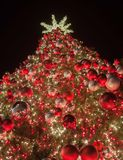Beautiful Christmas Tree. Tall outdoor Christmas tree covered with lights and bright red, pink and gold ornaments Royalty Free Stock Image