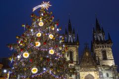 Prague at Christmas. The beautiful Christmas tree and Tyn Church in the Old Town Square in Prague, Czech Republic royalty free stock images