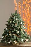 Beautiful Christmas tree on wooden boards. Preparation for holidays concept. Flower shop is a master work of a Stock Images