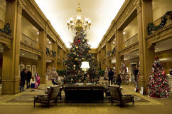 Beautiful Christmas trees in a luxury hotel royalty free stock images