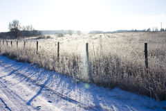Beautiful Christmas winter landscape-field covered with white sn Royalty Free Stock Images