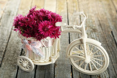 Beautiful chrysanthemums in bicycle on blue wooden background Royalty Free Stock Photos