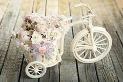 Beautiful chrysanthemums in bicycle on wooden background. Royalty Free Stock Photo