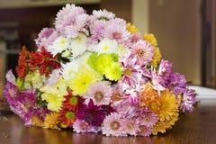 Beautiful  chrysanthemums bouquet Stock Photos