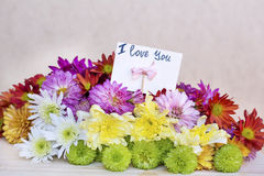 Beautiful  chrysanthemums bouquet with i love you card Stock Photo