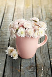 Beautiful chrysanthemums in cup on wooden background. Royalty Free Stock Images