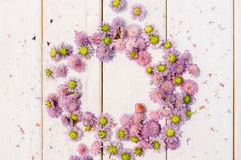 Beautiful circlet of aster flowers on white wood. Beautiful circlet of purple aster flowers on white wooden background. Delicate floral composition with free Stock Image