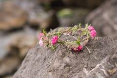 Beautiful circlet of flowers. Beautiful pink roses and different flowers. Beautiful circlet of flowers. Beautiful different flowers stock photography