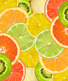Beautiful citrus fruits of lemon, orange, grapefruit, lime backg Stock Image