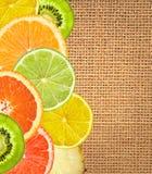 Beautiful citrus fruits of lemon, orange, grapefruit, lime Royalty Free Stock Image