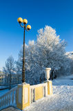 beautiful city park with trees covered with hoarfrost Royalty Free Stock Photo