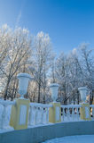 beautiful city park with trees covered with hoarfrost Stock Image
