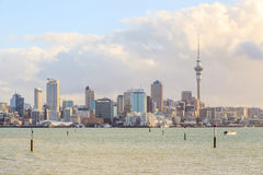 Beautiful cityscape of Auckland sky tower and city in New Zealan Royalty Free Stock Image