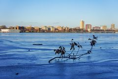 Beautiful cityscape with Charles river. At Boston, Massachusetts, United States Royalty Free Stock Photo