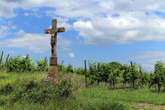 Beautiful classic cross between the vineyards in Alsace . Stock Photos