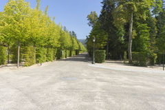 Beautiful classical gardens of La Granja de San Ildefonso, monum Royalty Free Stock Photo