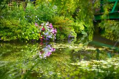 Beautiful Claude Monet`s Garden of Giverny, lilies pond Stock Photos