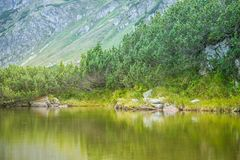A beautiful, clean lake in the mountain valley in calm, sunny day. Mountain landscape with water in summer. Tatry mountains in Slovakia, Europe stock image