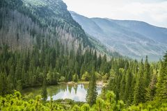 A beautiful, clean lake in the mountain valley in calm, sunny day. Mountain landscape with water in summer. royalty free stock photo
